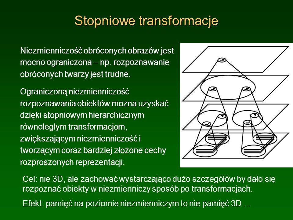 Model rozpoznawania Model objrec.proj.gz, wiele hiperkolumn, ale bardzo prostych.