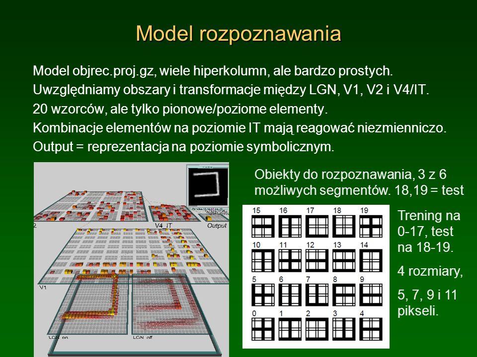 Własności modelu rozpoznawania Hiperkolumna: te same sygnały, przesunięte i częściowo się pokrywające.