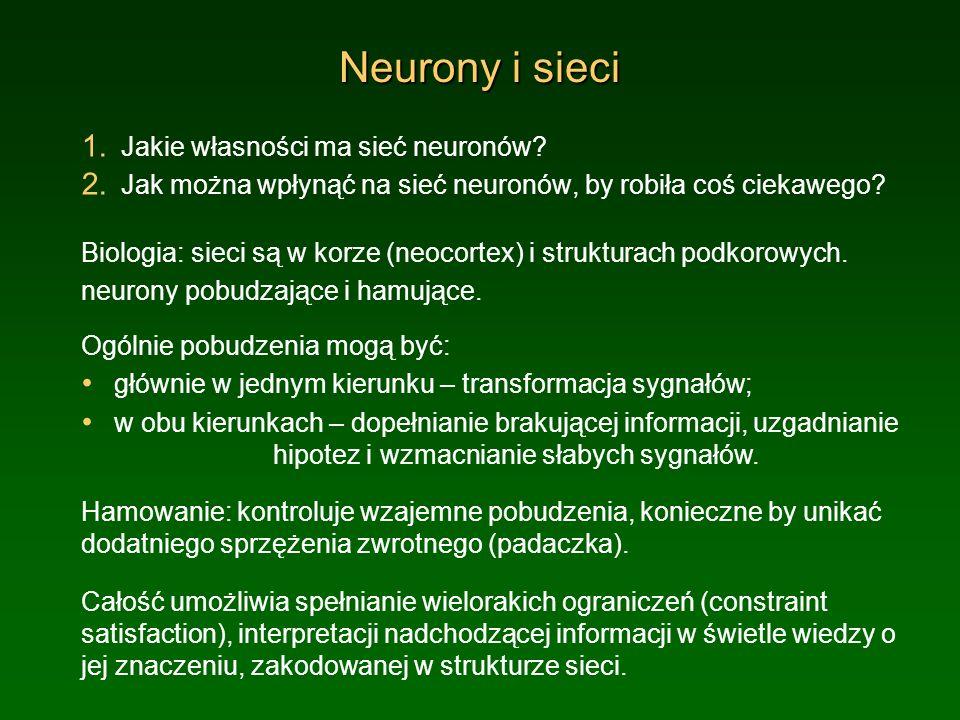 Neurony i sieci 1. Jakie własności ma sieć neuronów? 2. Jak można wpłynąć na sieć neuronów, by robiła coś ciekawego? Biologia: sieci są w korze (neoco