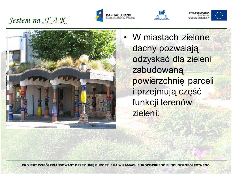 W miastach zielone dachy pozwalają odzyskać dla zieleni zabudowaną powierzchnię parceli i przejmują część funkcji terenów zieleni: