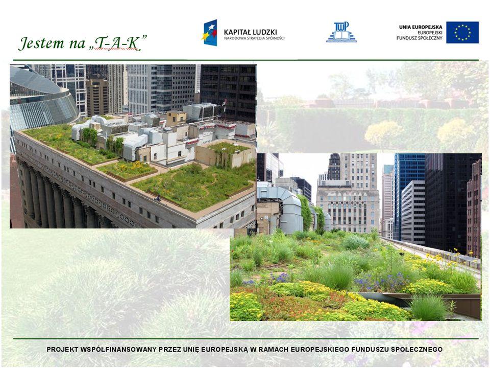 Dachy zielone projektowane w zgodzie z naturą wprowadzają wartość estetyczną do gęstej, często monotonnej zabudowy miejskiej, dają człowiekowi więcej spokoju, odprężenia i odpoczynku, wpływają więc bardzo pozytywnie na ludzką psychikę.