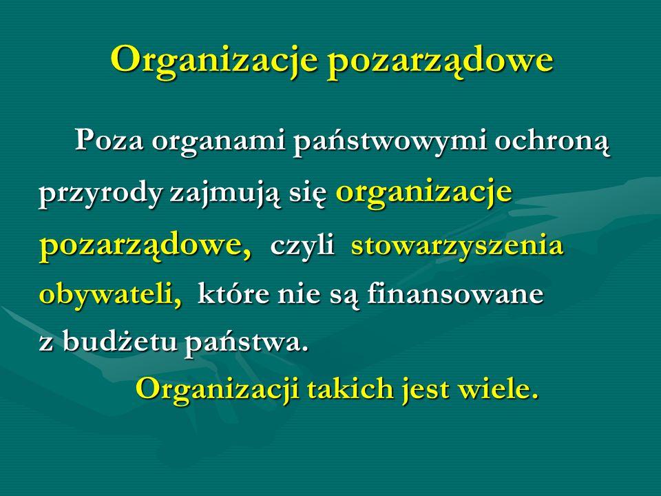 Organizacje pozarządowe Poza organami państwowymi ochroną Poza organami państwowymi ochroną przyrody zajmują się organizacje przyrody zajmują się orga