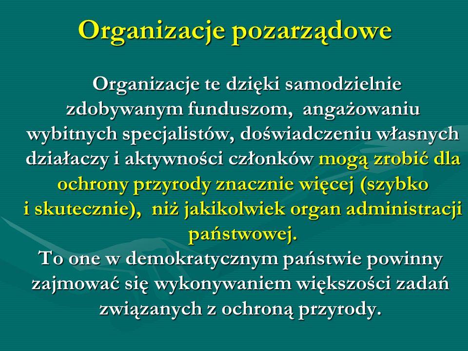 Organizacje pozarządowe Organizacje te dzięki samodzielnie Organizacje te dzięki samodzielnie zdobywanym funduszom, angażowaniu zdobywanym funduszom,