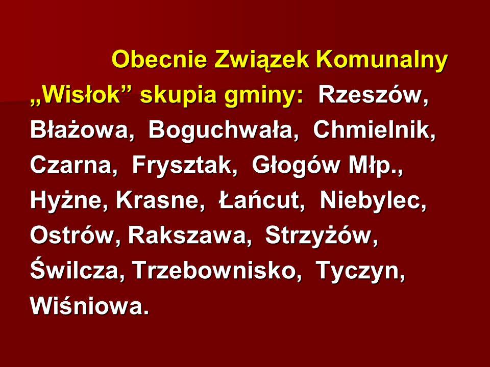 Obecnie Związek Komunalny Obecnie Związek Komunalny Wisłok skupia gminy: Rzeszów, Błażowa, Boguchwała, Chmielnik, Czarna, Frysztak, Głogów Młp., Hyżne