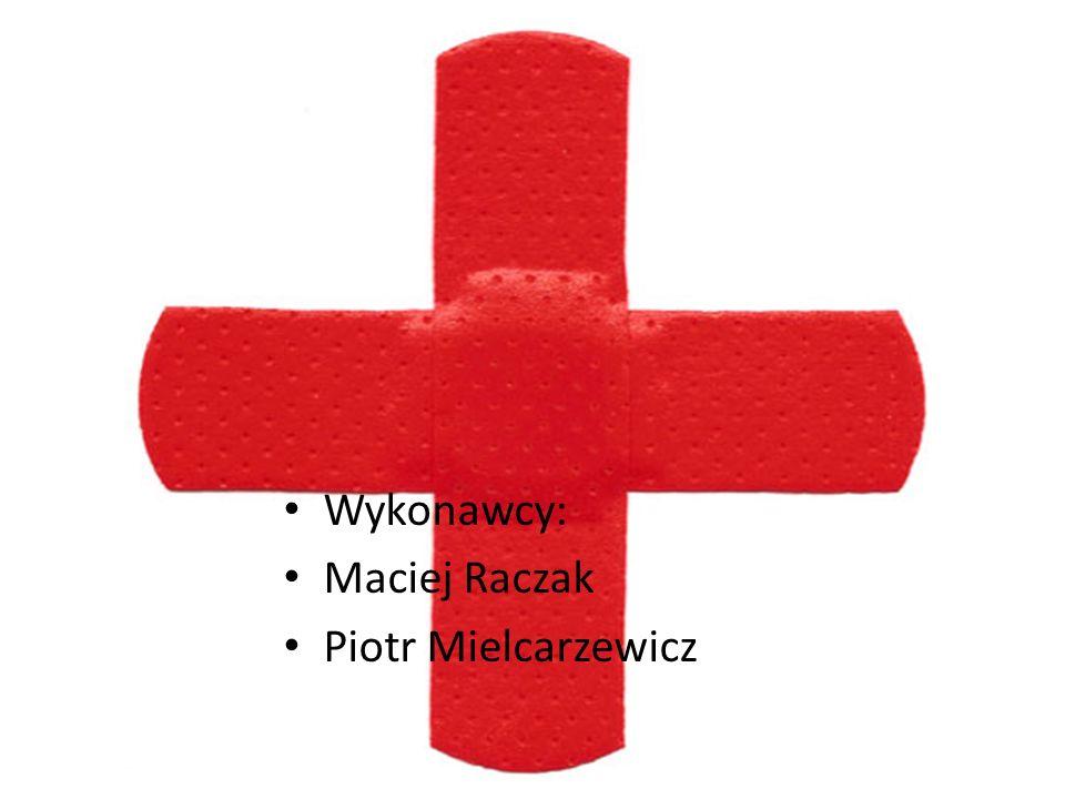 Wykonawcy: Maciej Raczak Piotr Mielcarzewicz