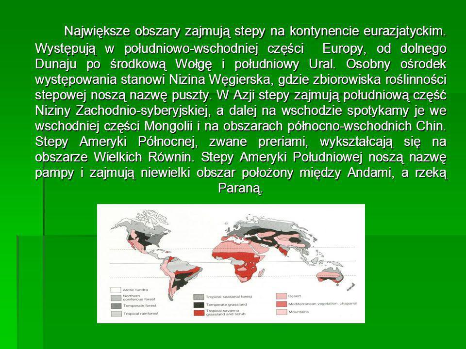 Największe obszary zajmują stepy na kontynencie eurazjatyckim. Występują w południowo-wschodniej części Europy, od dolnego Dunaju po środkową Wołgę i