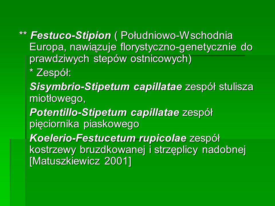 ** Festuco-Stipion ( Południowo-Wschodnia Europa, nawiązuje florystyczno-genetycznie do prawdziwych stepów ostnicowych) * Zespół: Sisymbrio-Stipetum c