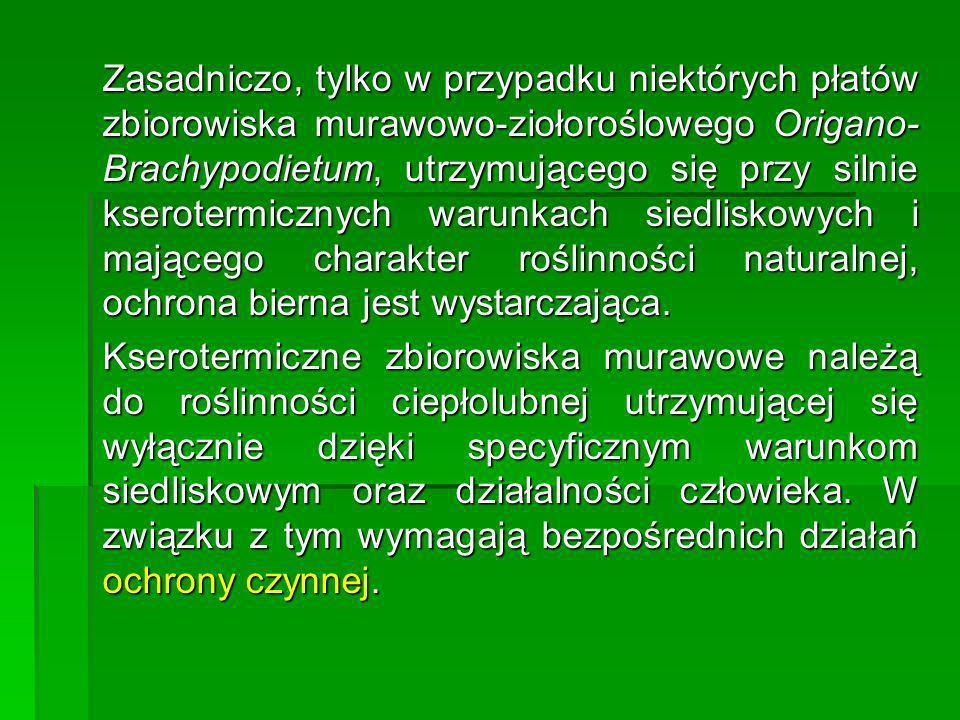 Zasadniczo, tylko w przypadku niektórych płatów zbiorowiska murawowo-ziołoroślowego Origano- Brachypodietum, utrzymującego się przy silnie kserotermic