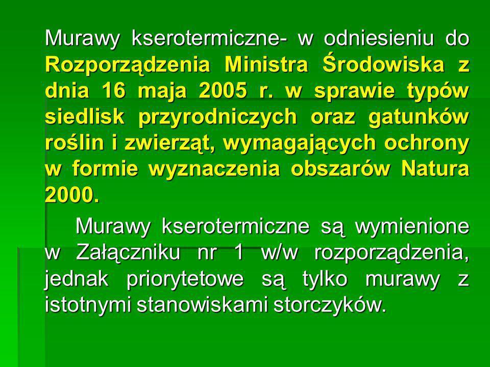 Murawy kserotermiczne- w odniesieniu do Rozporządzenia Ministra Środowiska z dnia 16 maja 2005 r. w sprawie typów siedlisk przyrodniczych oraz gatunkó