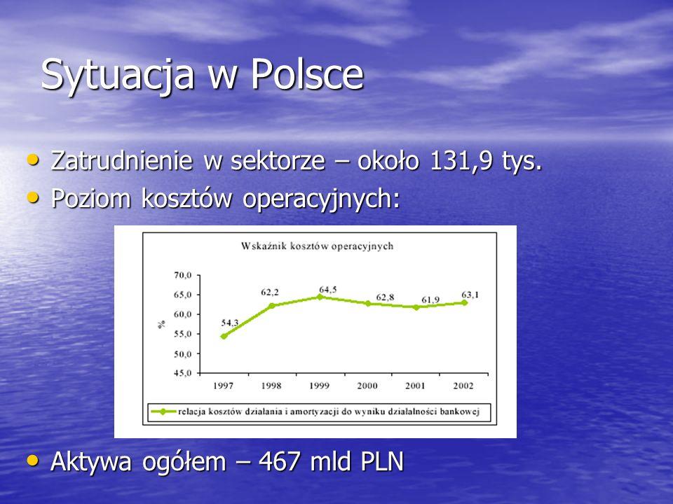 Sytuacja w Polsce Zatrudnienie w sektorze – około 131,9 tys. Zatrudnienie w sektorze – około 131,9 tys. Poziom kosztów operacyjnych: Poziom kosztów op