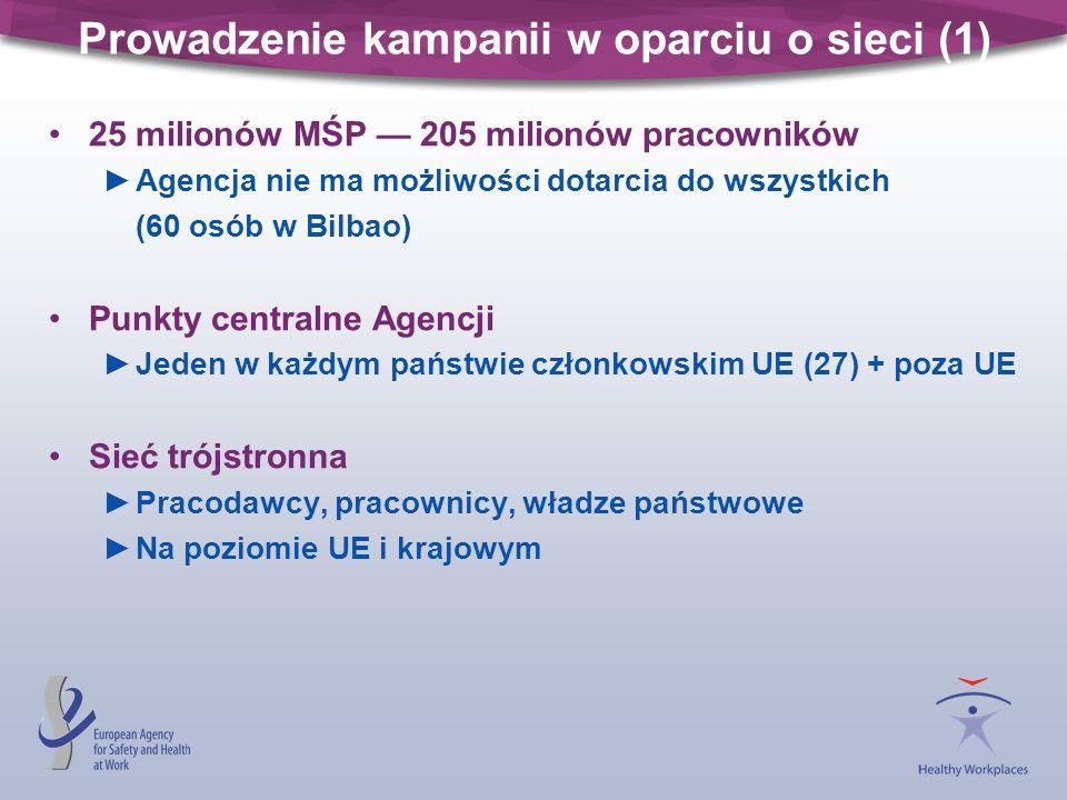 Prowadzenie kampanii w oparciu o sieci (1) 25 milionów MŚP 205 milionów pracowników Agencja nie ma możliwości dotarcia do wszystkich (60 osób w Bilbao