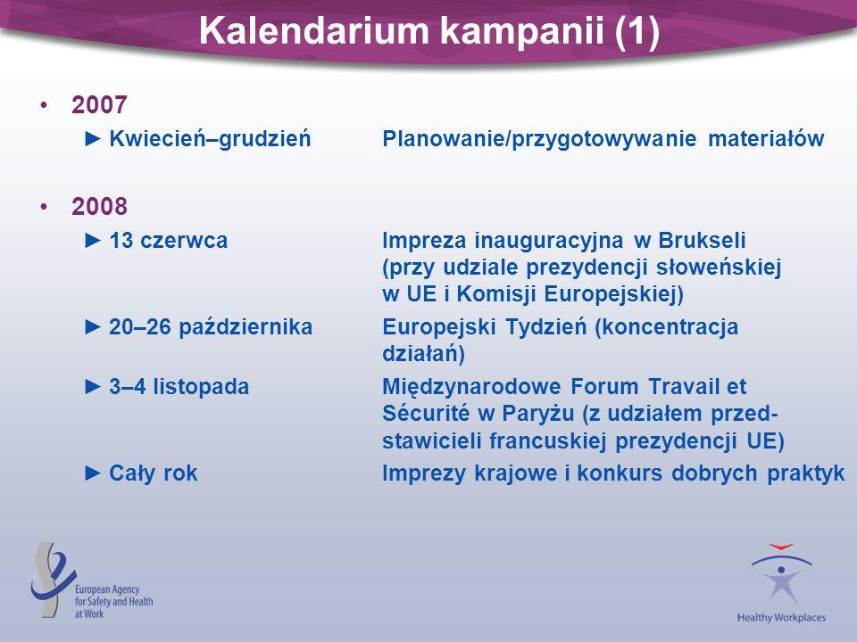 Kalendarium kampanii (1) 2007 Kwiecień–grudzień Planowanie/przygotowywanie materiałów 2008 13 czerwcaImpreza inauguracyjna w Brukseli (przy udziale pr
