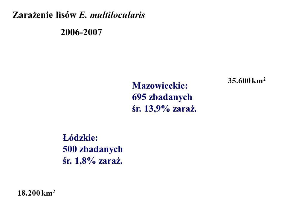 Łódzkie: 500 zbadanych śr. 1,8% zaraż. Mazowieckie: 695 zbadanych śr. 13,9% zaraż. 18.200 km 2 Zarażenie lisów E. multilocularis 2006-2007 35.600 km 2