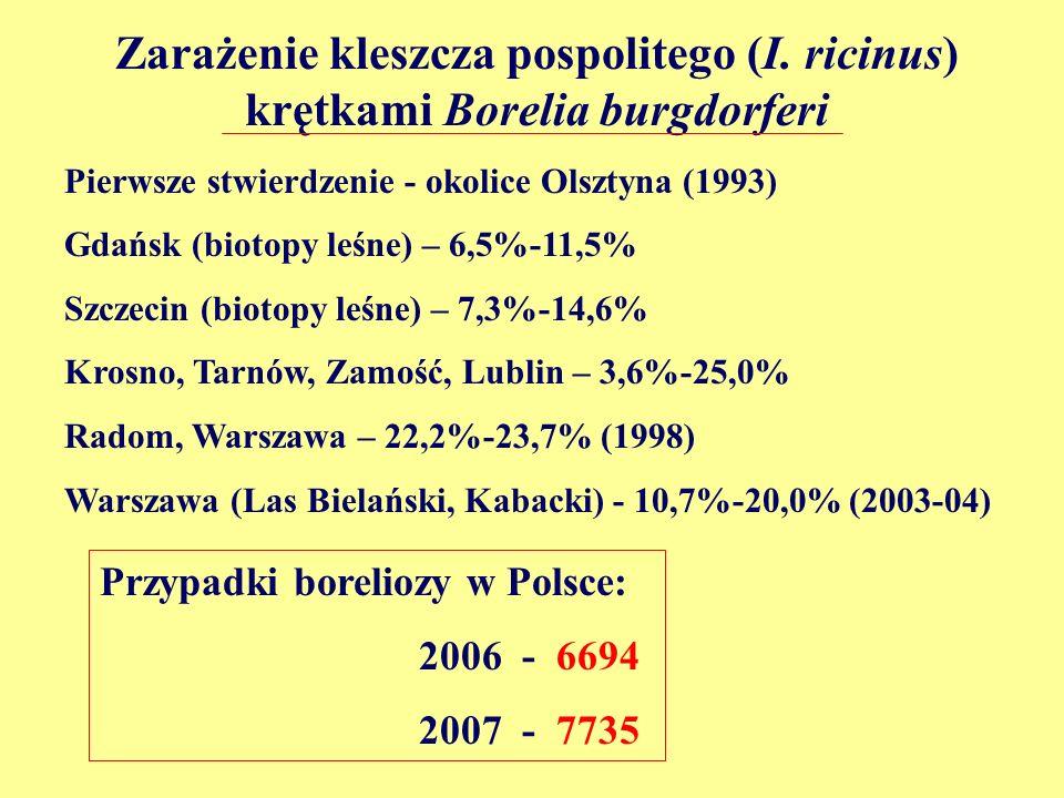 Zarażenie kleszcza pospolitego (I. ricinus) krętkami Borelia burgdorferi Pierwsze stwierdzenie - okolice Olsztyna (1993) Gdańsk (biotopy leśne) – 6,5%