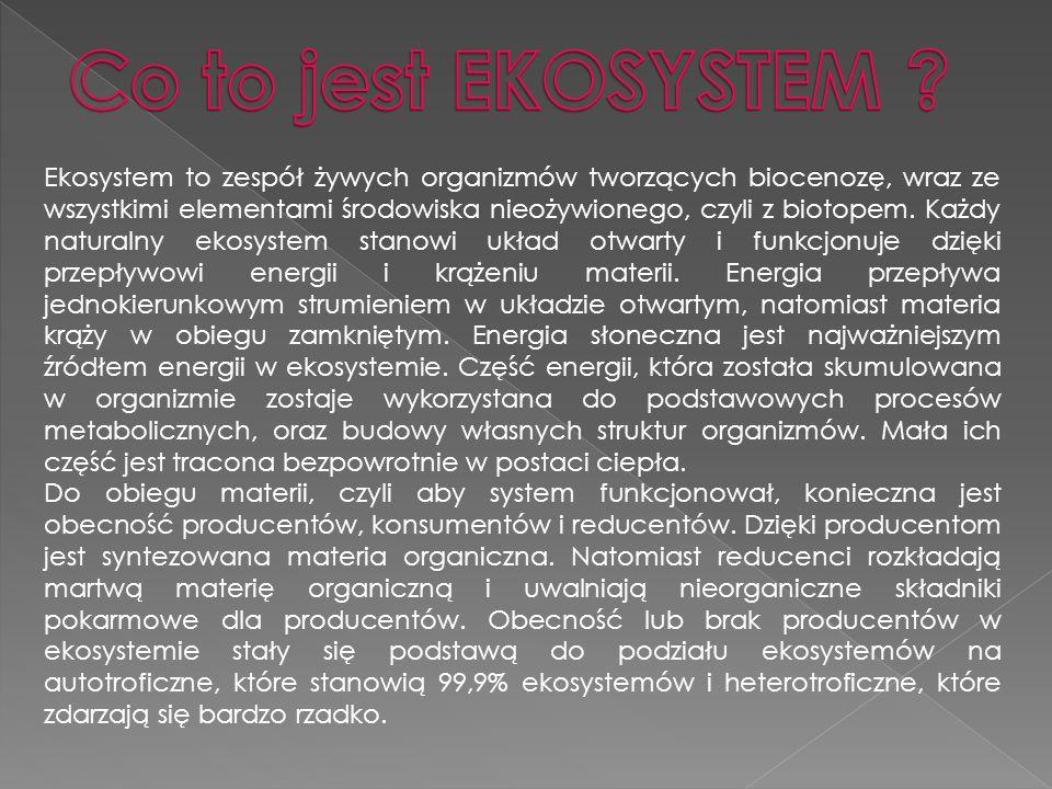 Ekosystem to zespół żywych organizmów tworzących biocenozę, wraz ze wszystkimi elementami środowiska nieożywionego, czyli z biotopem. Każdy naturalny
