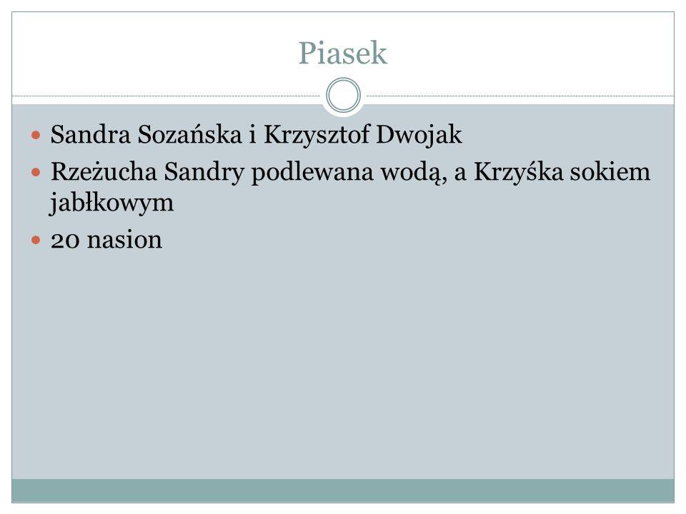 Piasek Sandra Sozańska i Krzysztof Dwojak Rzeżucha Sandry podlewana wodą, a Krzyśka sokiem jabłkowym 20 nasion