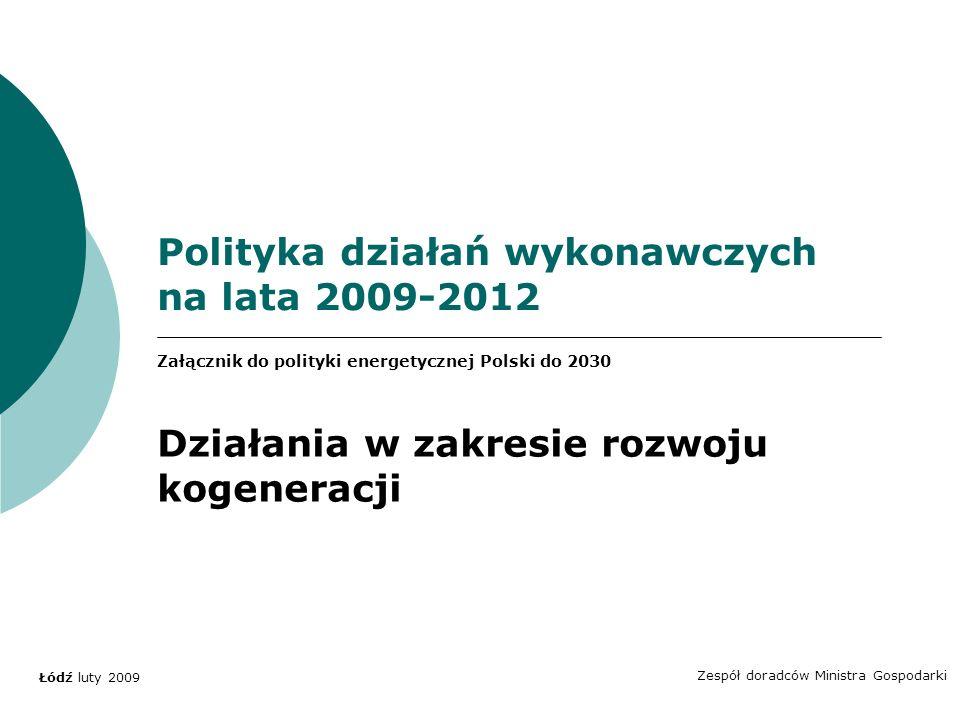 Polityka działań wykonawczych na lata 2009-2012 Zespół doradców Ministra Gospodarki Łódź luty 2009 Załącznik do polityki energetycznej Polski do 2030