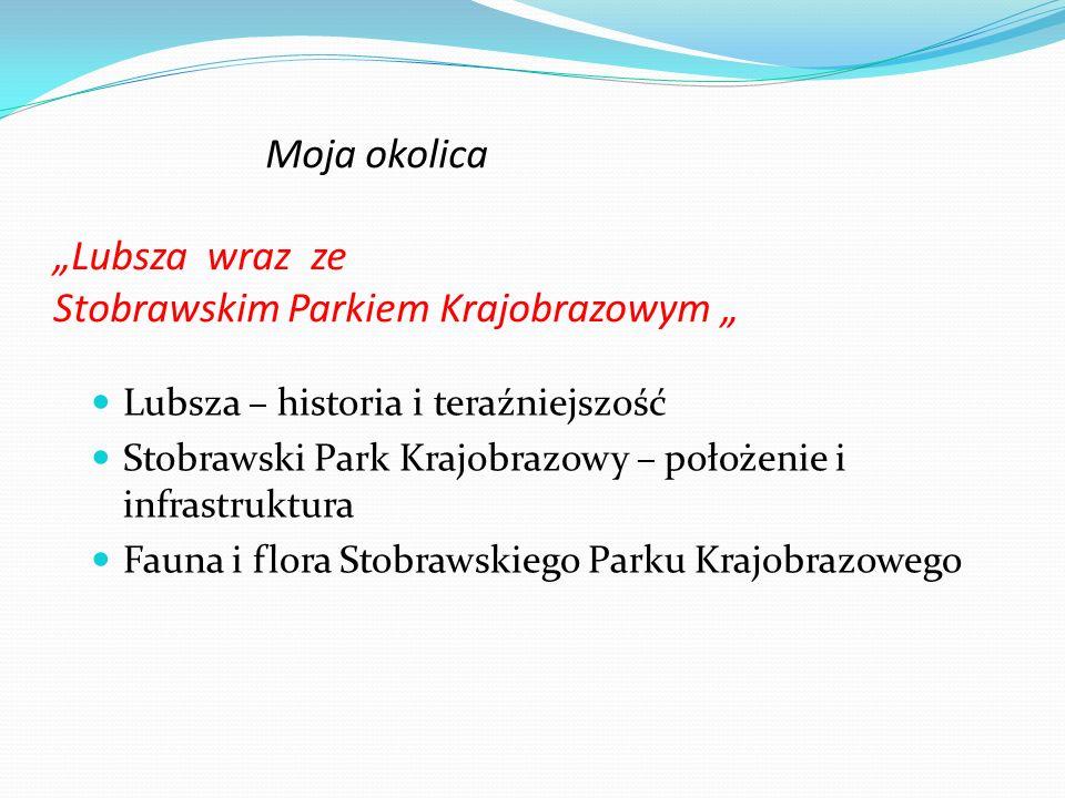 Moja okolica Lubsza wraz ze Stobrawskim Parkiem Krajobrazowym Lubsza – historia i teraźniejszość Stobrawski Park Krajobrazowy – położenie i infrastruk