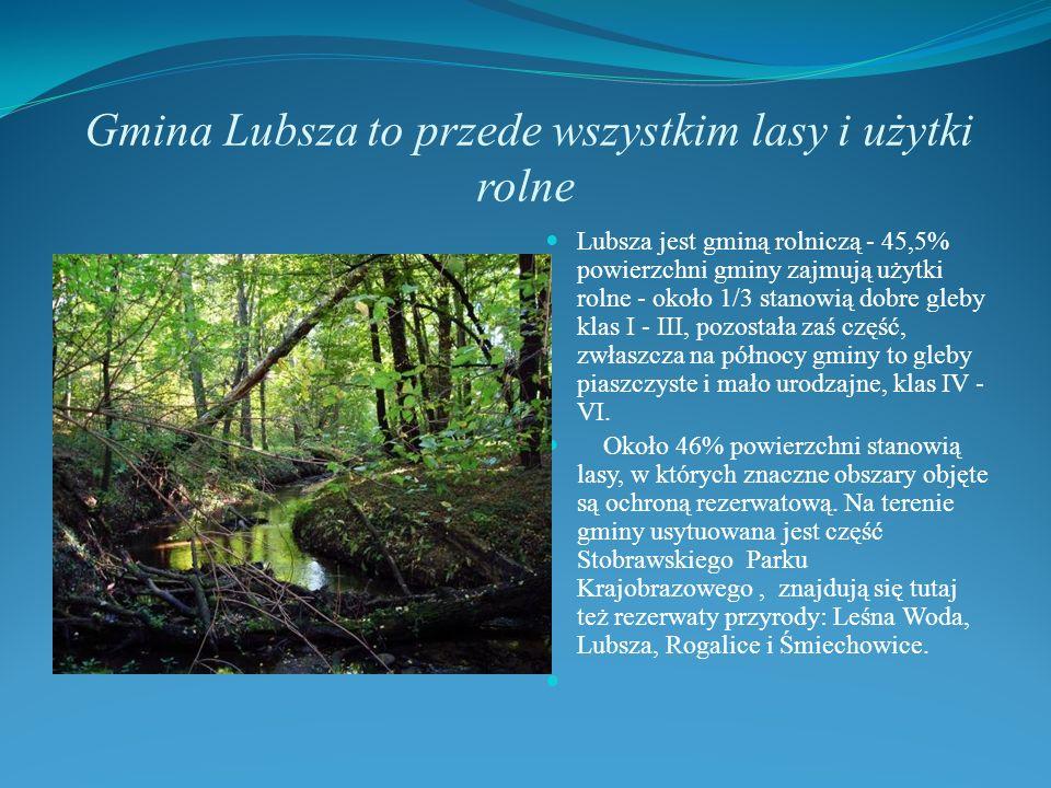 Gmina Lubsza to przede wszystkim lasy i użytki rolne Lubsza jest gminą rolniczą - 45,5% powierzchni gminy zajmują użytki rolne - około 1/3 stanowią do