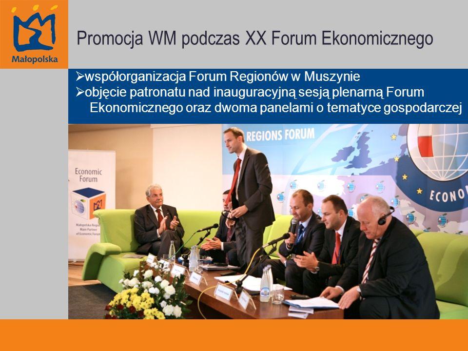 Promocja WM podczas XX Forum Ekonomicznego współorganizacja Forum Regionów w Muszynie objęcie patronatu nad inauguracyjną sesją plenarną Forum Ekonomicznego oraz dwoma panelami o tematyce gospodarczej