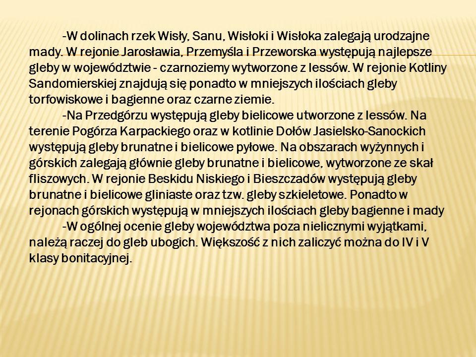 -W dolinach rzek Wisły, Sanu, Wisłoki i Wisłoka zalegają urodzajne mady. W rejonie Jarosławia, Przemyśla i Przeworska występują najlepsze gleby w woje