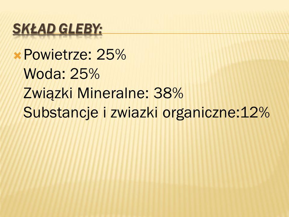 Powietrze: 25% Woda: 25% Związki Mineralne: 38% Substancje i zwiazki organiczne:12%
