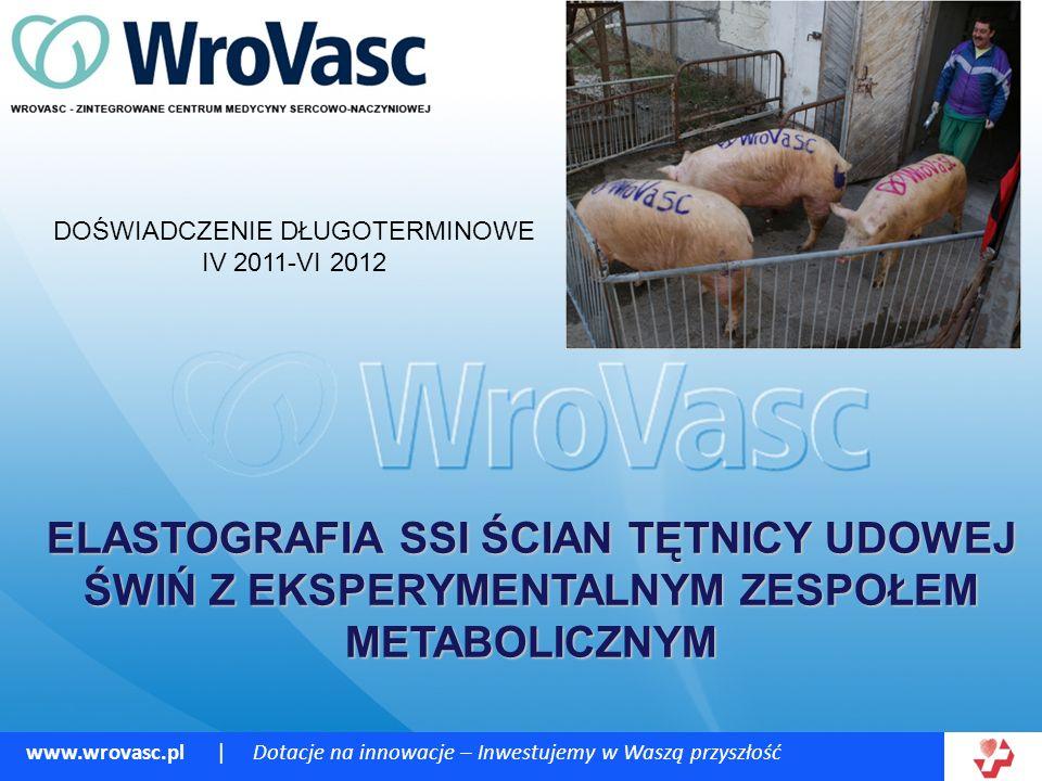 www.wrovasc.pl | Dotacje na innowacje – Inwestujemy w Waszą przyszłość ELASTOGRAFIA SSI ŚCIAN TĘTNICY UDOWEJ ŚWIŃ Z EKSPERYMENTALNYM ZESPOŁEM METABOLICZNYM DOŚWIADCZENIE DŁUGOTERMINOWE IV 2011-VI 2012