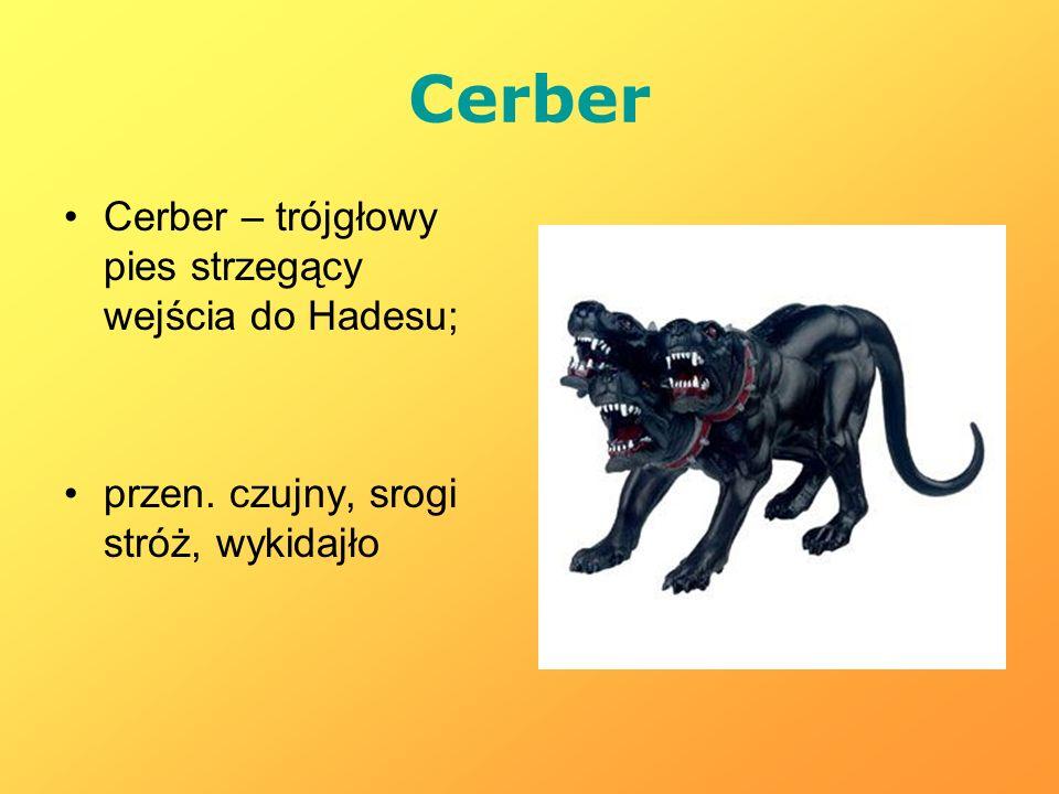 Cerber Cerber – trójgłowy pies strzegący wejścia do Hadesu; przen. czujny, srogi stróż, wykidajło