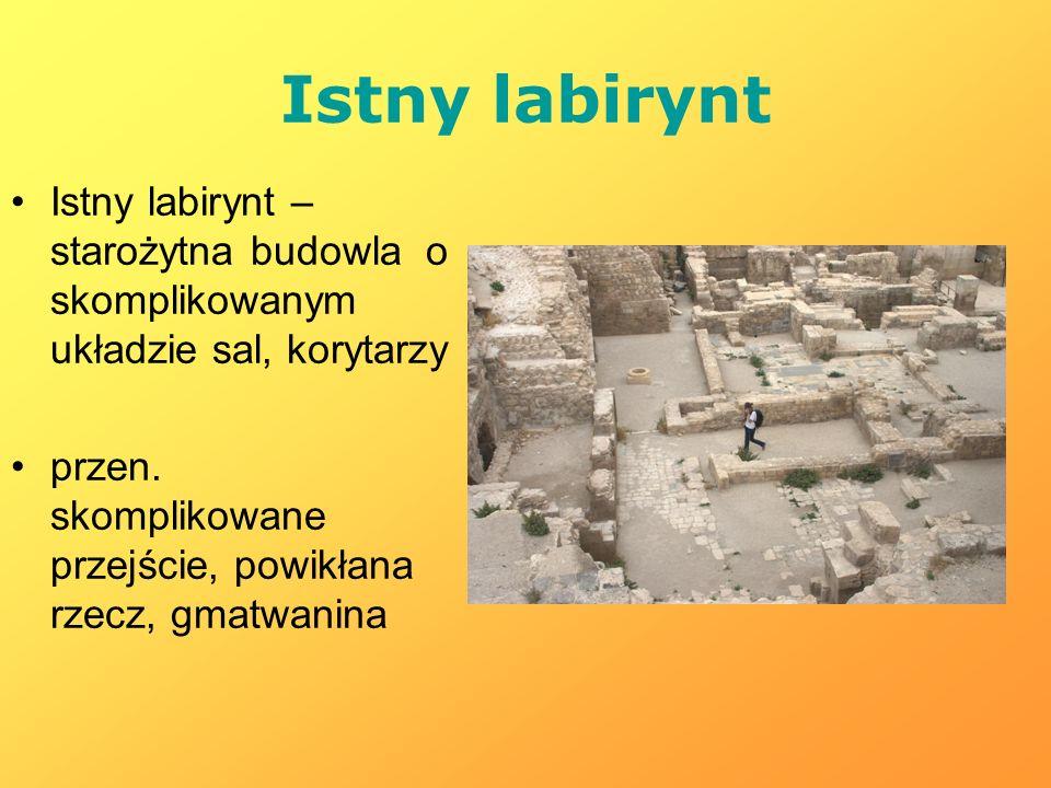 Istny labirynt Istny labirynt – starożytna budowla o skomplikowanym układzie sal, korytarzy przen. skomplikowane przejście, powikłana rzecz, gmatwanin