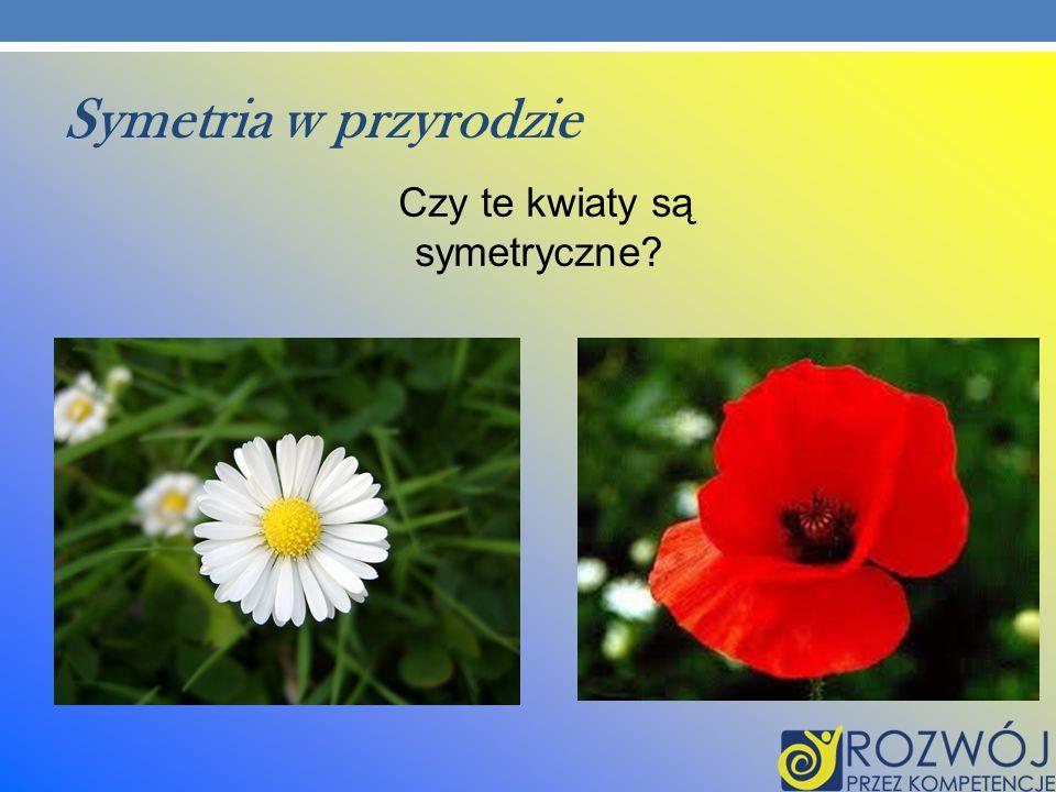 Symetria w przyrodzie Czy te kwiaty są symetryczne?