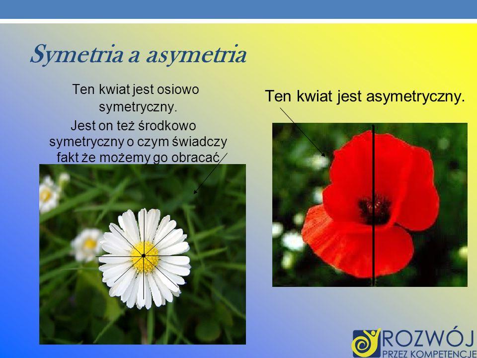 Symetria a asymetria Ten kwiat jest osiowo symetryczny. Jest on też środkowo symetryczny o czym świadczy fakt że możemy go obracać Ten kwiat jest asym