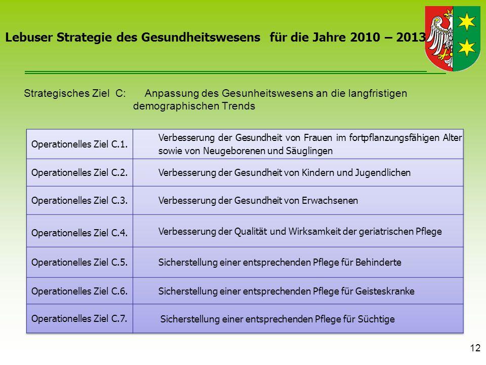 12 Lebuser Strategie des Gesundheitswesens für die Jahre 2010 – 2013 Strategisches Ziel C: Anpassung des Gesunheitswesens an die langfristigen demogra