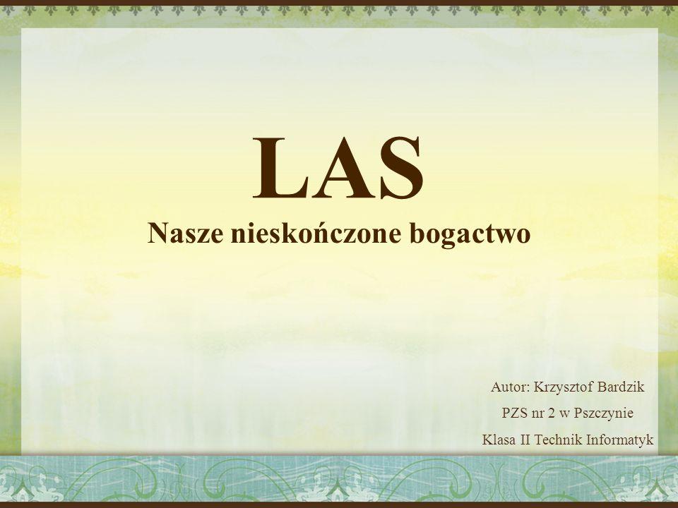LAS Autor: Krzysztof Bardzik PZS nr 2 w Pszczynie Klasa II Technik Informatyk Nasze nieskończone bogactwo