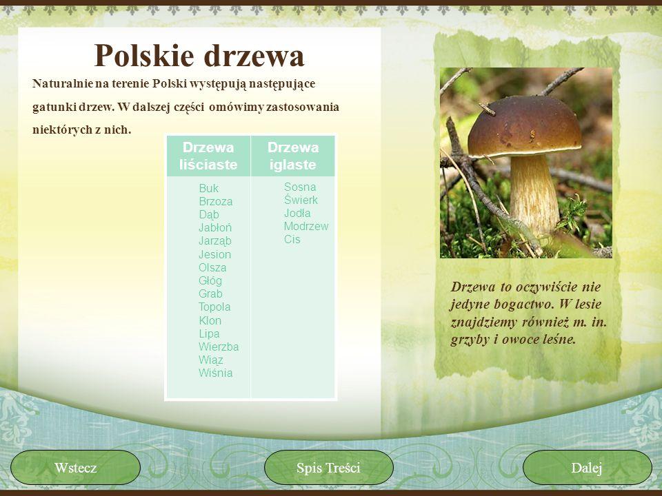 Polskie drzewa Naturalnie na terenie Polski występują następujące gatunki drzew. W dalszej części omówimy zastosowania niektórych z nich. Drzewa to oc