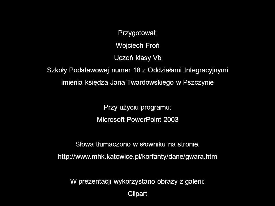 Przygotował: Wojciech Froń Uczeń klasy Vb Szkoły Podstawowej numer 18 z Oddziałami Integracyjnymi imienia księdza Jana Twardowskiego w Pszczynie Przy