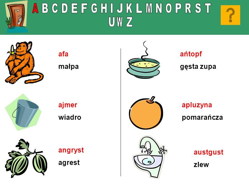 afa małpa ajmer wiadro angryst agrest ańtopf gęsta zupa apluzyna pomarańcza austgust zlew