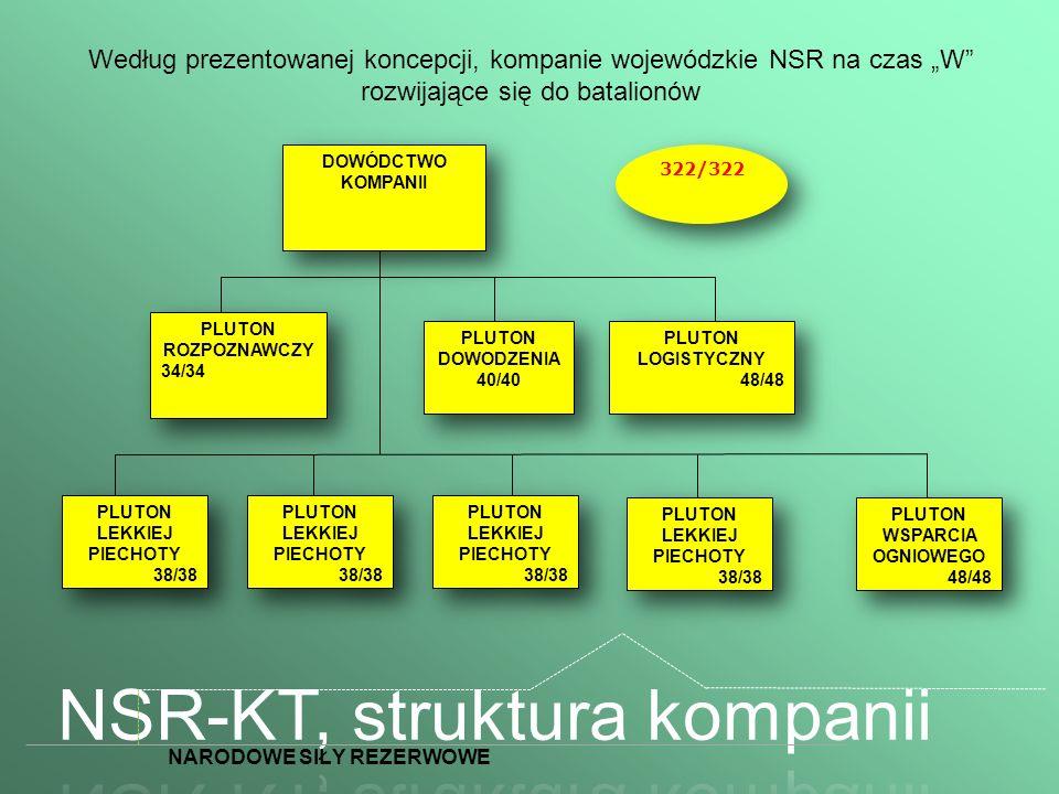 Według prezentowanej koncepcji, kompanie wojewódzkie NSR na czas W rozwijające się do batalionów DOWÓDCTWO KOMPANII PLUTON DOWODZENIA 40/40 PLUTON DOW