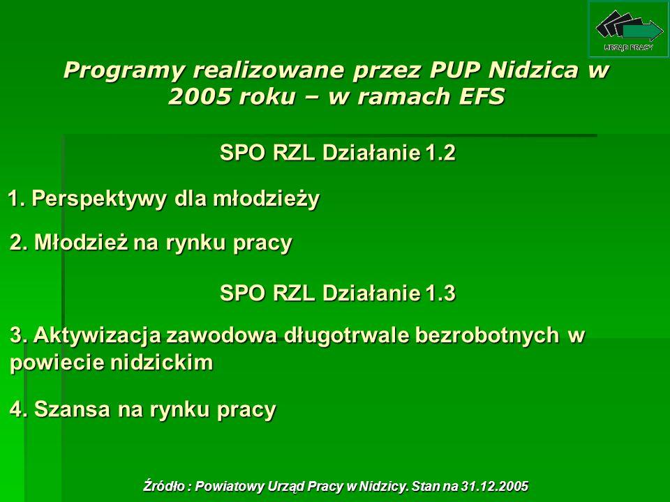 Programy realizowane przez PUP Nidzica w 2005 roku – w ramach EFS 1. Perspektywy dla młodzieży 1. Perspektywy dla młodzieży 2. Młodzież na rynku pracy