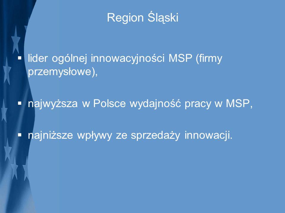 Region Śląski lider ogólnej innowacyjności MSP (firmy przemysłowe), najwyższa w Polsce wydajność pracy w MSP, najniższe wpływy ze sprzedaży innowacji.