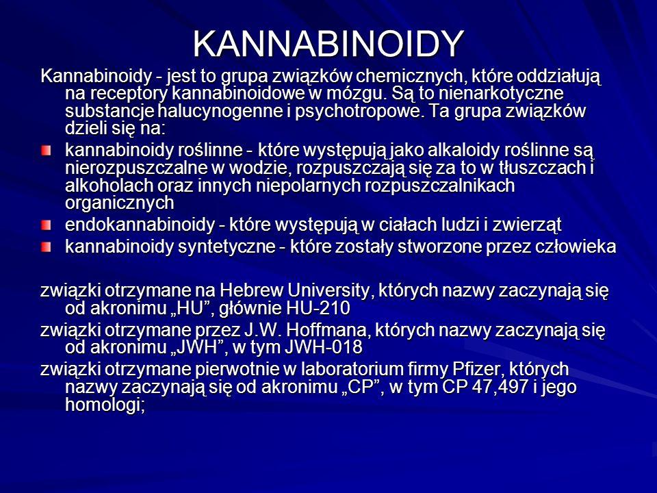 Substancje wchodzące w skład dopalaczy KANABINOIDYMEFEDRONKRATOMKOKAINA AMFETAMINA i jej pochodne LEKIINNE