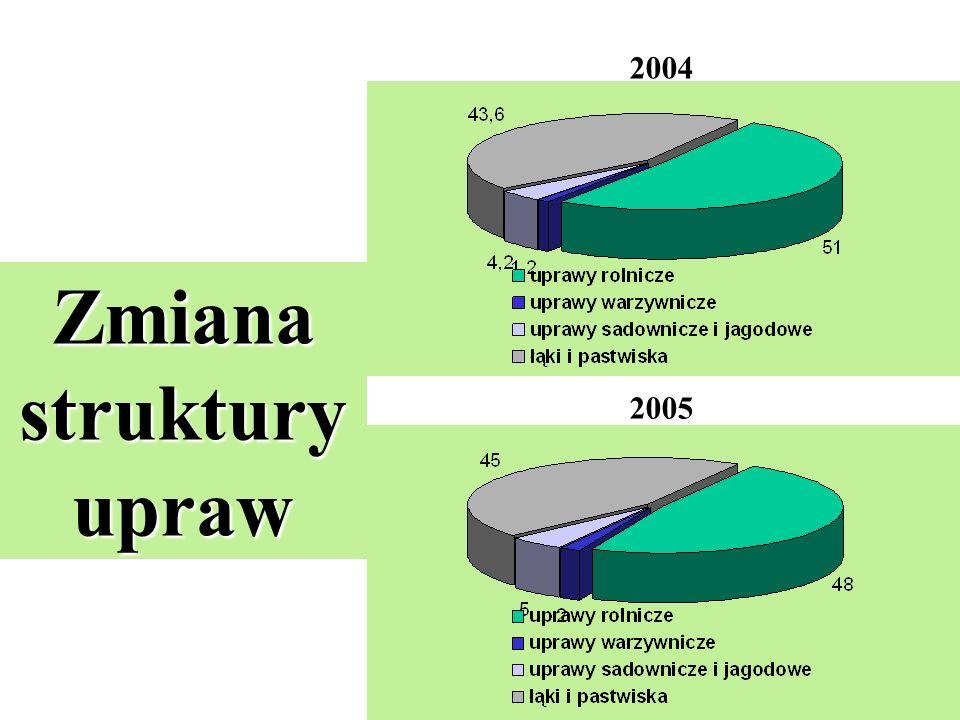 2004 2005 Zmiana struktury upraw