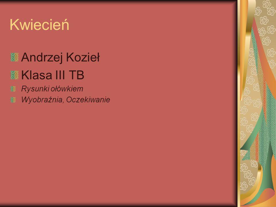 Kwiecień Andrzej Kozieł Klasa III TB Rysunki ołówkiem Wyobraźnia, Oczekiwanie
