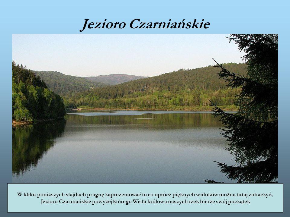 Jezioro Czarniańskie W kliku poniższych slajdach pragnę zaprezentować to co oprócz pięknych widoków można tutaj zobaczyć, Jezioro Czarniańskie powyżej