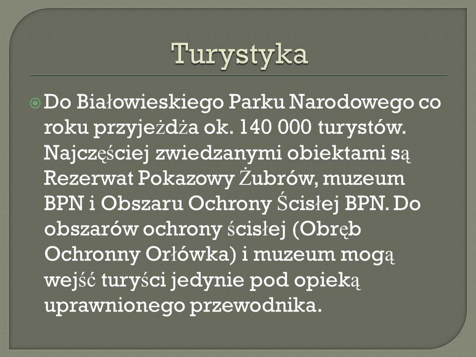 Do Bia ł owieskiego Parku Narodowego co roku przyje ż d ż a ok. 140 000 turystów. Najcz ęś ciej zwiedzanymi obiektami s ą Rezerwat Pokazowy Ż ubrów, m