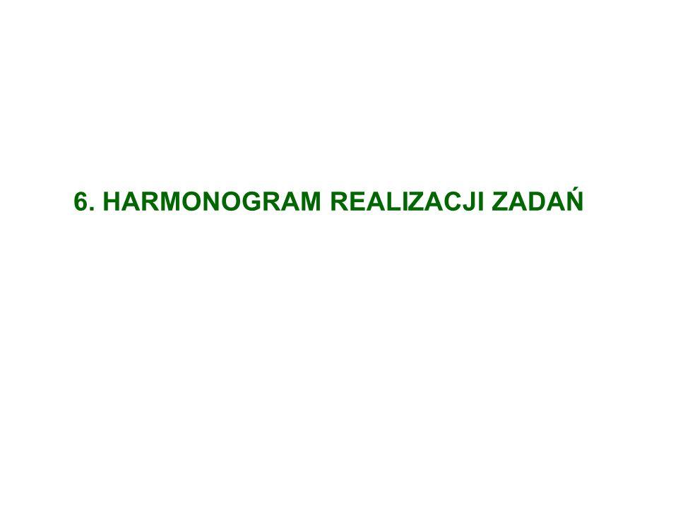 6. HARMONOGRAM REALIZACJI ZADAŃ