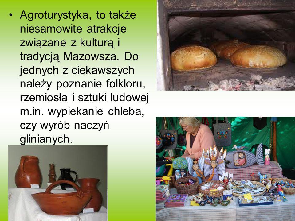 Agroturystyka, to także niesamowite atrakcje związane z kulturą i tradycją Mazowsza. Do jednych z ciekawszych należy poznanie folkloru, rzemiosła i sz