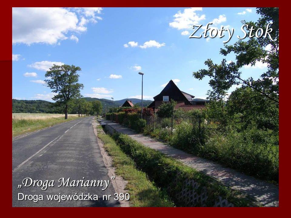 Złoty Stok Droga wojewódzka nr 390 Droga Marianny