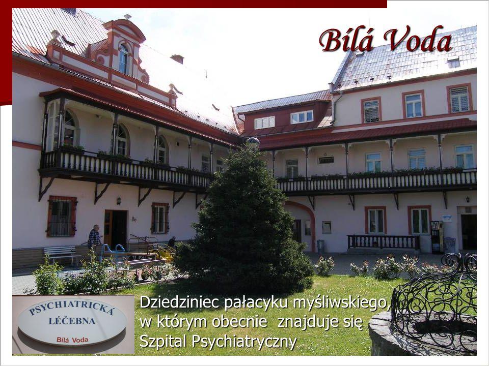 Bílá Voda Dziedziniec pałacyku myśliwskiego, w którym obecnie znajduje się Szpital Psychiatryczny