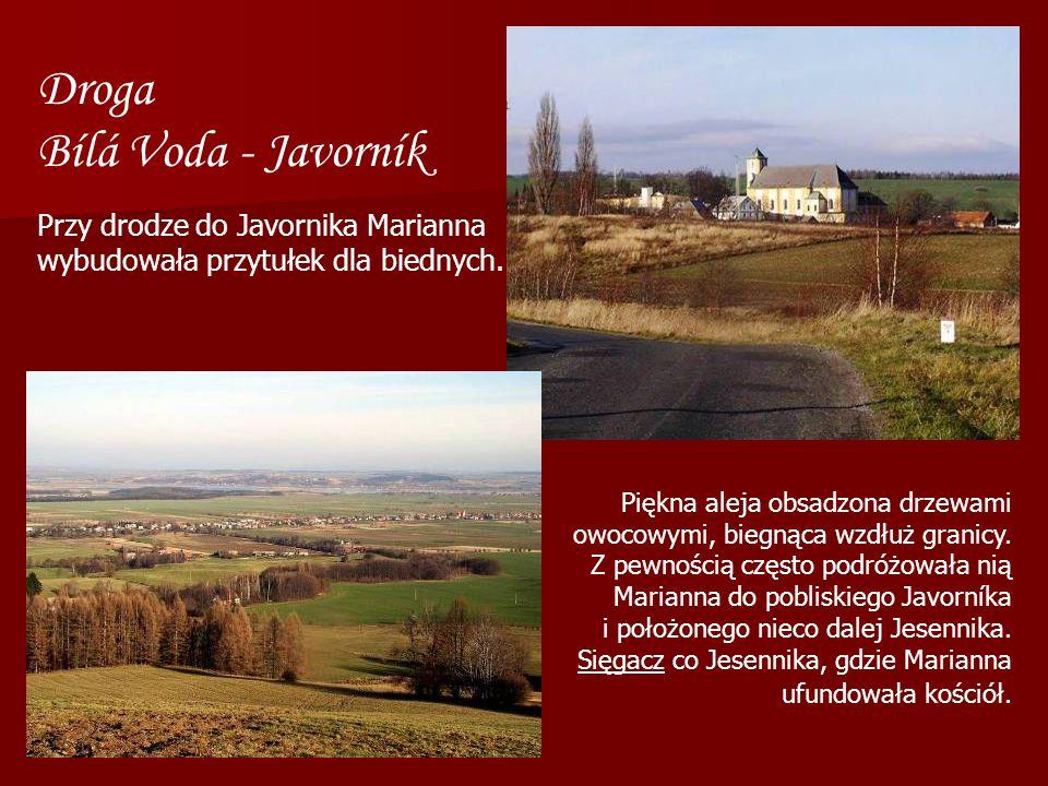 Droga Bílá Voda - Javorník Piękna aleja obsadzona drzewami owocowymi, biegnąca wzdłuż granicy. Z pewnością często podróżowała nią Marianna do pobliski