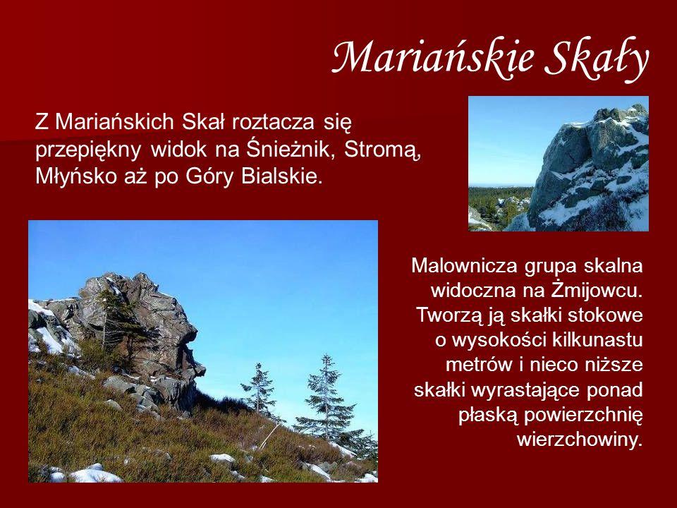 Mariańskie Skały Malownicza grupa skalna widoczna na Żmijowcu. Tworzą ją skałki stokowe o wysokości kilkunastu metrów i nieco niższe skałki wyrastając
